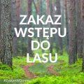 Nadleśnictwo Oborniki ogłosiło zakaz wstępu do lasu