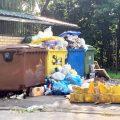 Problemom śmieciowym wciąż nie ma końca