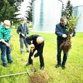 Sadzili drzewa miododajne