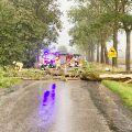 Padło drzewo wprost na drogę